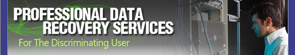 Professional data recovery services.