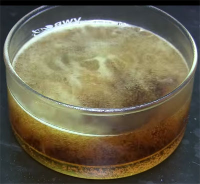 hard-disk-in-acid